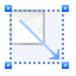 transform-scale-icon